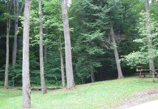 Kooser Park