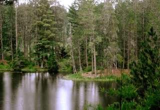 Bear Head Lake