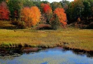 Mille Lacs Kathio
