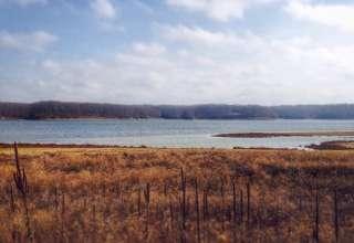 Lake Shelby