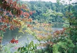 Big Hill Pond