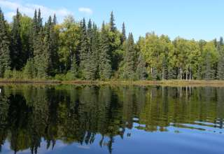 Nancy Lake