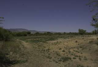 Dead Horse Ranch