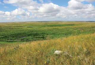Dakota Prairie Grasslands