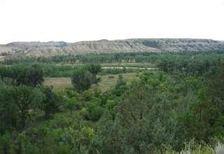 Sully Creek