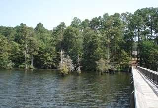 Lake D'Arbonne