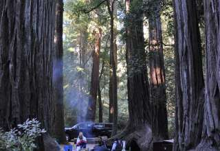 Big basin redwoods state park camping big basin redwoods sciox Images