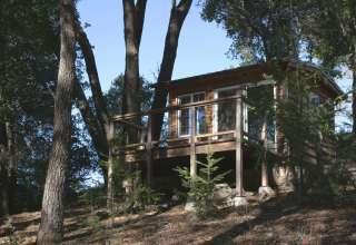 Redwood Mountain Magic