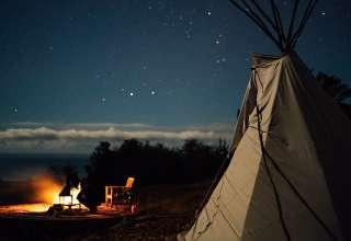 WildTender Ranch