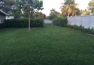 Miami Suburban Oasis