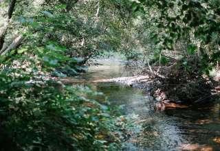 Brunet River Ranch