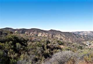 Rewild Ranch