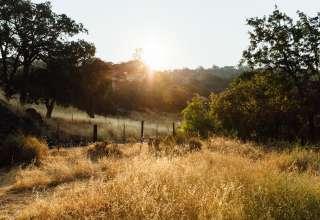 Arroyo Creekside