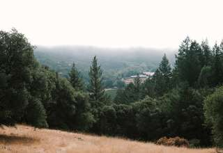 Odin Camp Wine Country