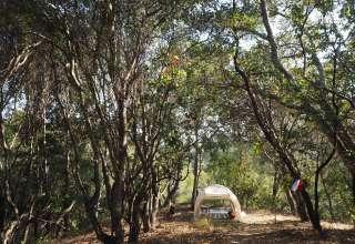 1776 Redwood Lands