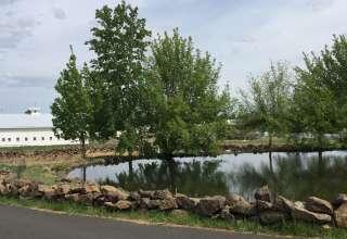 Ben'd oasis