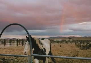 Copper Mountain Ranch