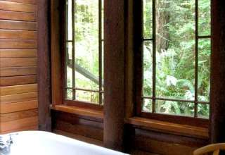 Treehaven Cabin