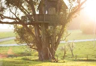 Magical, Romantic Treehouse