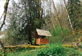 Forest Farmstead