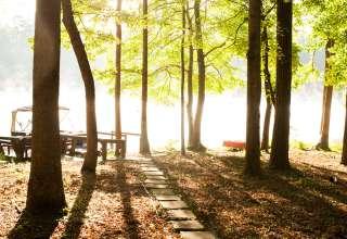 Zen On The Lake