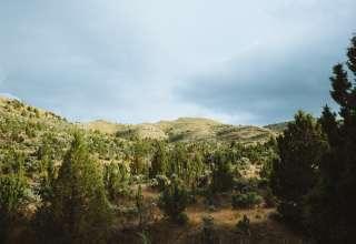 Guyon Springs