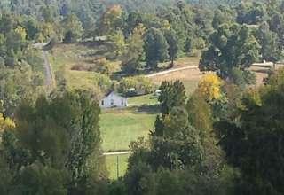 Open Pasture Paradise