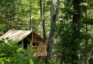 Marshall Tent Cabins