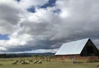 Rockside Ranch
