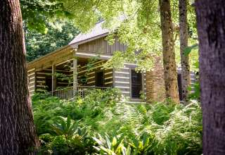Cabin at Magic Tree Sanctuary