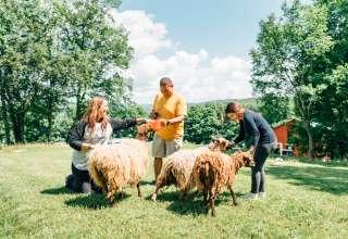 Bethel Pastures Farm