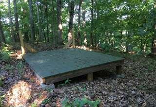 Wood Thrush Ridge