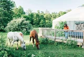 Tim and Beth's Farm