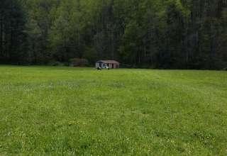2 Ol Foxes Farm