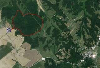Wild Dunbar Hill