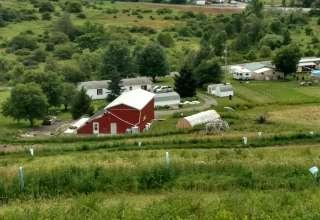 New View Aquaponic Farm