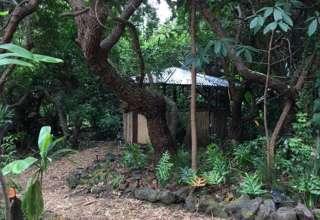 Earthsong Magical Sanctuary