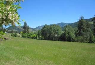 Quillisascut Farm