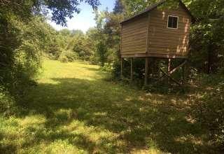 Amy's Backyard