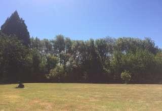 Gaberielle M.'s Land