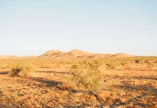 Vincent B.'s Land