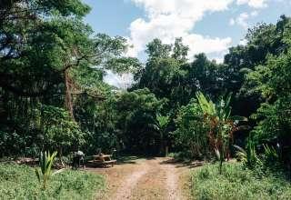 Ewa-Wava Farm in Hawaii