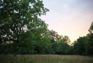 Whiterock Conservancy