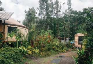 Delia M.'s Land