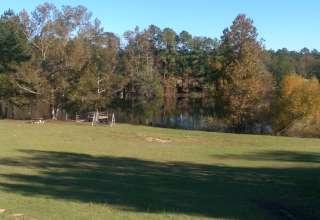 Holly Oak Farms
