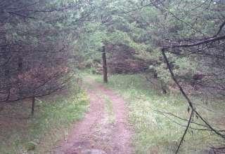 Andzen Acres, A Hidden Gem