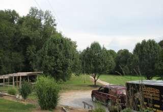 Wildlife & Superman Camp