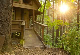 Enchanting Secluded Wood Cabin