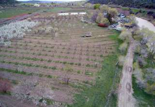 White Buffalo Farm