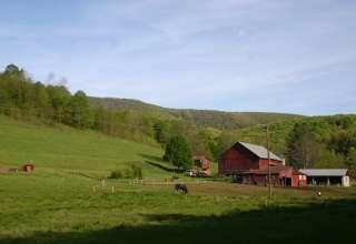 Jamboree Farm